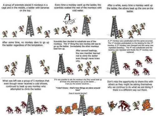 MonkeyAnalogy